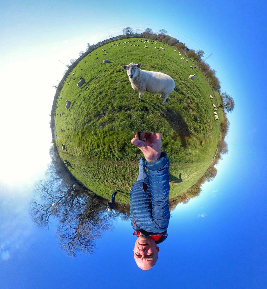 walk-border-collie-2 Walks In 360 Degrees With Rusty