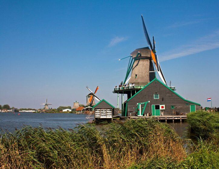 windmill de kat