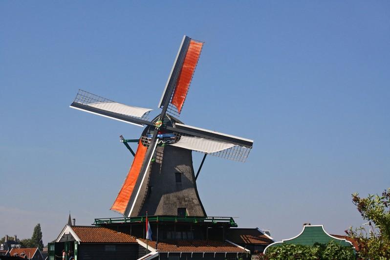 windmill jonge schaap