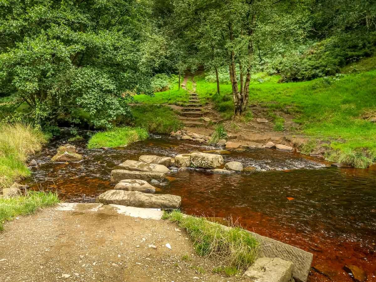 Walks Through Wyming Brook Nature Reserve – Hidden Wilderness 9