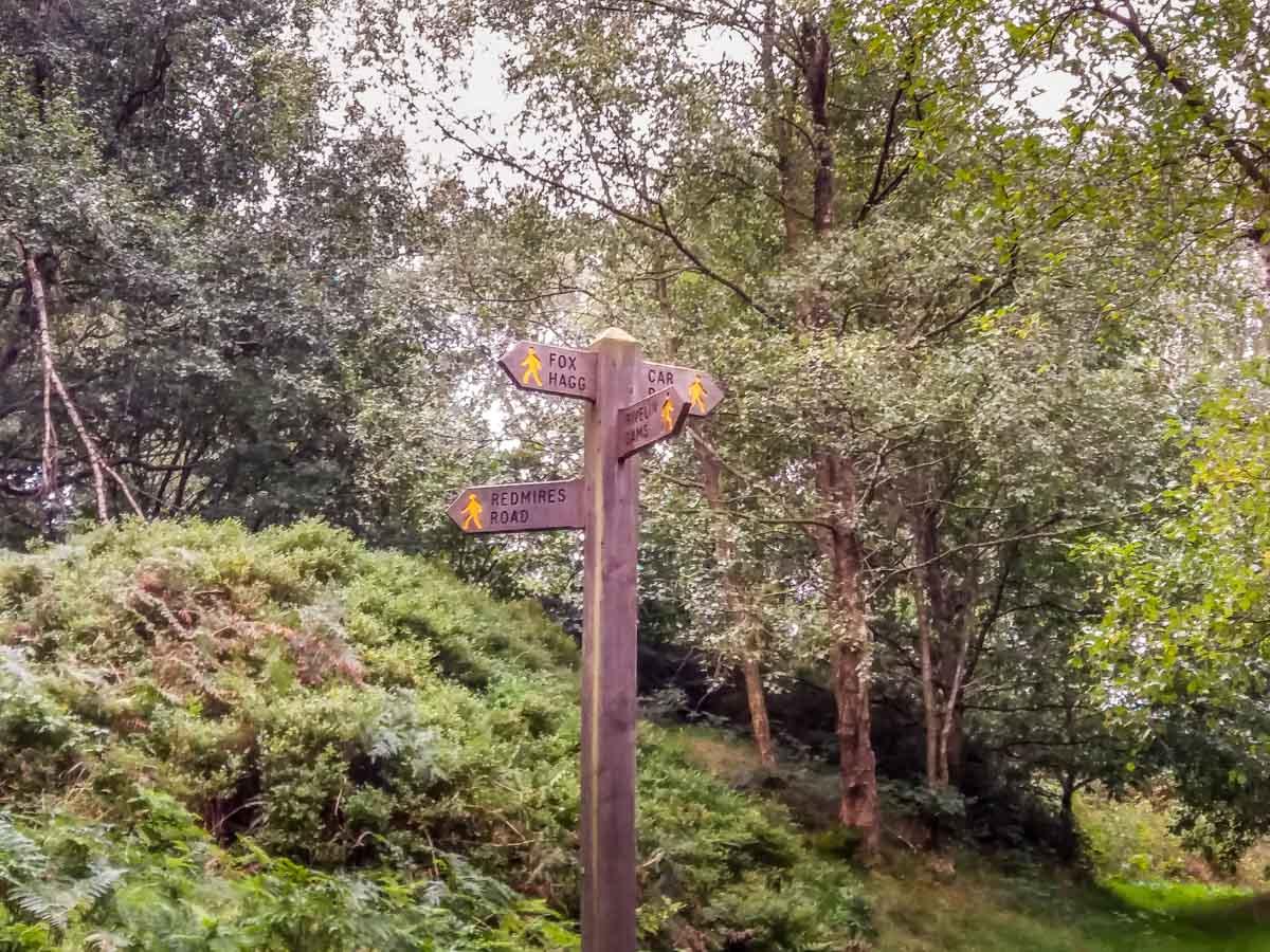 Walks Through Wyming Brook Nature Reserve – Hidden Wilderness 6